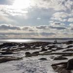vår på Skagsudde, Örnsköldsvik